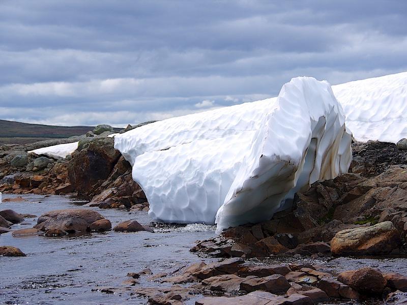 Sneeuw op de Hardangervidds