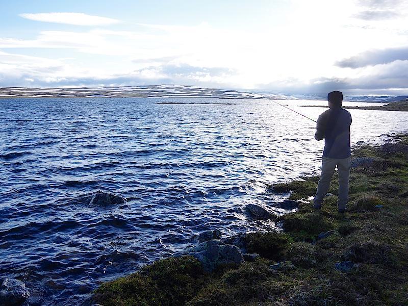 Vissen op forel op de Hardangervidda