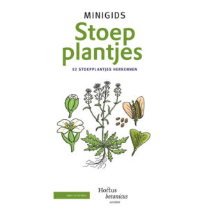 Minigids_Stoepplantjes
