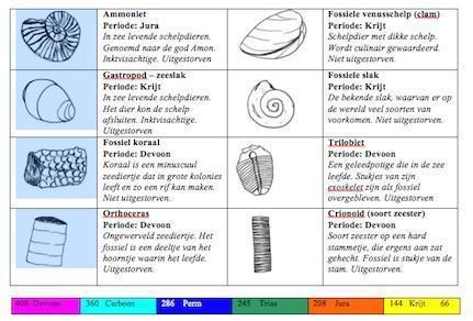 fossielen kaart