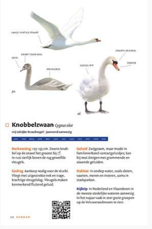 zakgids vogels van nederland en belgie2